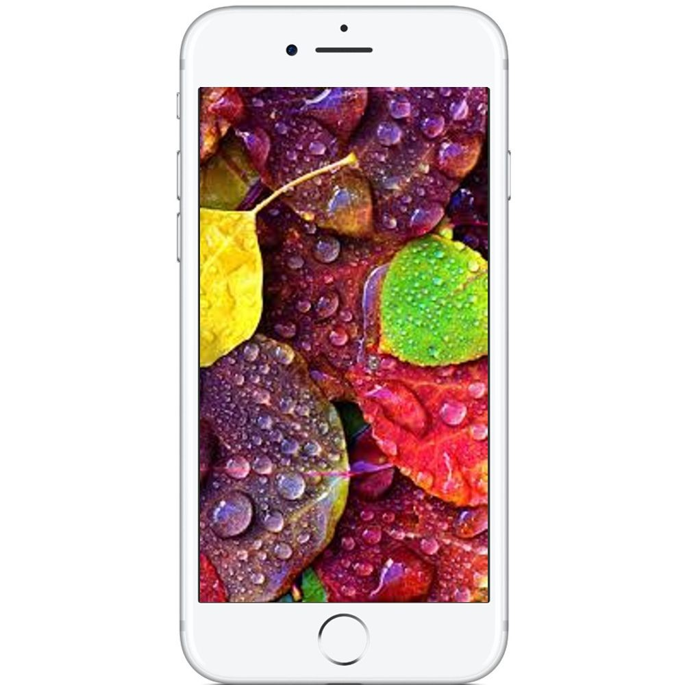 Celular Apple Iphone 7 128GB